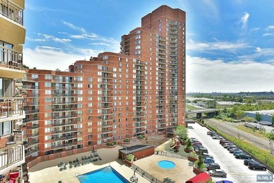 Hudson County Condo/Townhouse For Sale: 807 Harmon Cove Tower