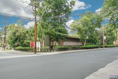 Tenafly Commercial For Sale: 111 Dean Drive