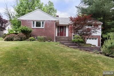 Park Ridge Single Family Home For Sale: 244 Rock Avenue