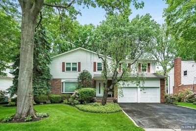 Englewood Cliffs Single Family Home For Sale: 62 Elm Street