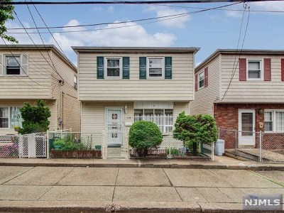 Jersey City Single Family Home For Sale: 113 Western Avenue