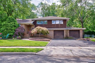Oradell Single Family Home For Sale: 144 Prospect Avenue
