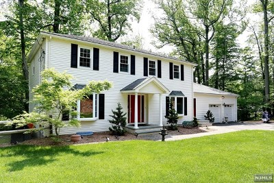 Upper Saddle River Single Family Home For Sale: 536 West Saddle River Road