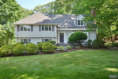 Upper Saddle River Single Family Home For Sale: 128 Fawnhill Road