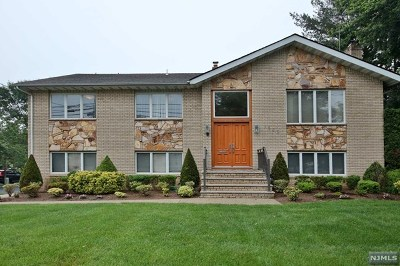 Fair Lawn Single Family Home For Sale: 15-25 Saddle River Road