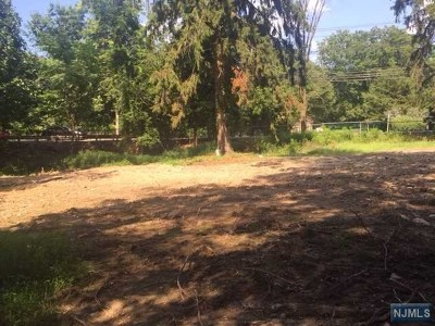 Woodcliff Lake Residential Lots & Land For Sale: 55 Woodcliff Avenue