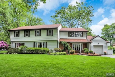 Paramus Single Family Home For Sale: 29 Ferndale Road