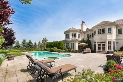 Cresskill Single Family Home For Sale: 160 Vaccaro Drive