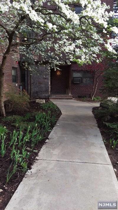 Rental For Rent: 410 Park Place #1d