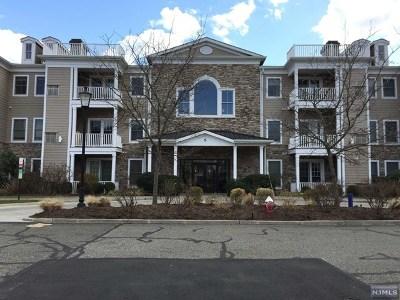 Cresskill Condo/Townhouse For Sale: 5 Tenakill Park Drive #322