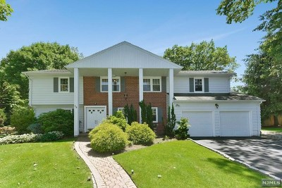 Englewood Cliffs Single Family Home For Sale: 19 Carol Drive