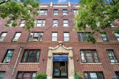 Weehawken Condo/Townhouse For Sale: 35-39 51st Street #D4