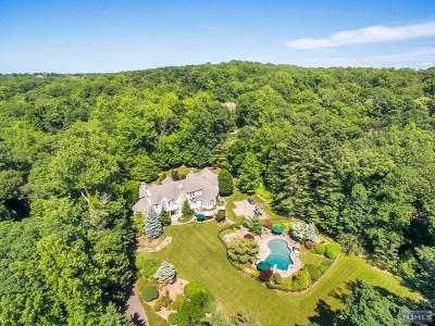 Tenafly Single Family Home For Sale: 211 Highwood Avenue