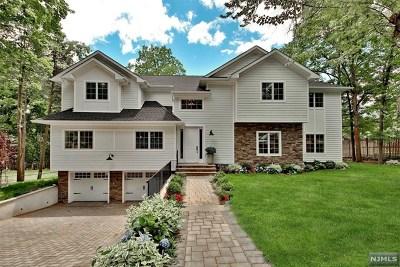 Demarest Single Family Home For Sale: 117 Cross Street