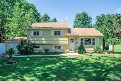 Waldwick Single Family Home For Sale: 55 Lyon Road