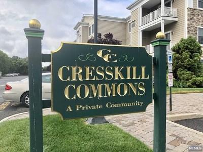 Cresskill Condo/Townhouse For Sale: 5 Tenakill Park Drive #216