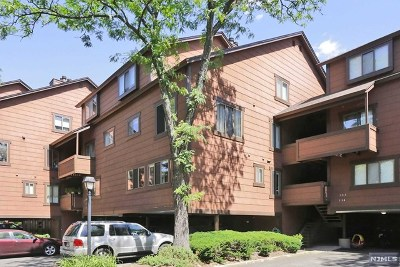 Secaucus NJ Condo/Townhouse For Sale: $359,000