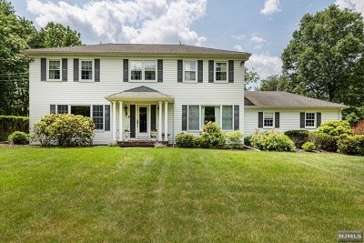 Upper Saddle River Single Family Home For Sale: 28 Cider Hill