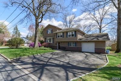 Cresskill Single Family Home For Sale: 72 Gilmore Avenue