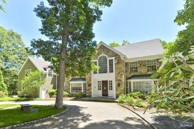 Saddle River Single Family Home For Sale: 12 Red Rock Trail