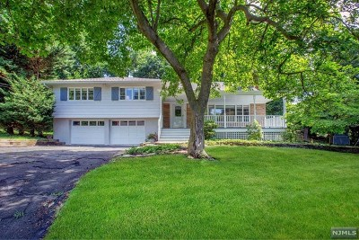 Montvale Single Family Home For Sale: 19 Hartel Lane