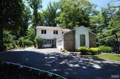 Upper Saddle River Single Family Home For Sale: 370 Lake Street