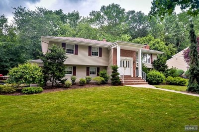 Paramus Single Family Home For Sale: 263 Springfield Avenue