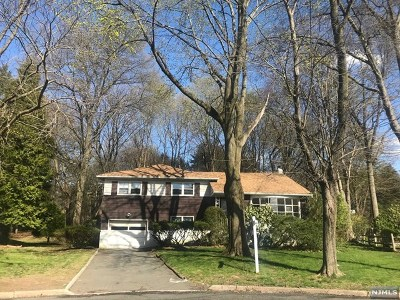 Cresskill Single Family Home For Sale: 149 Palisade Avenue