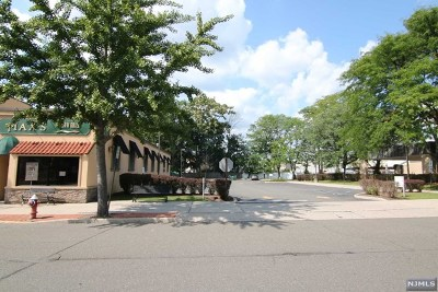 Tenafly Commercial For Sale: 39 Highwood Avenue