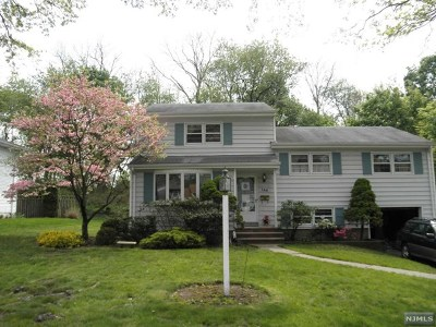 Paramus Single Family Home For Sale: 168 Morningside Road