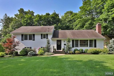 Ridgewood Single Family Home For Sale: 422 Colwell Court