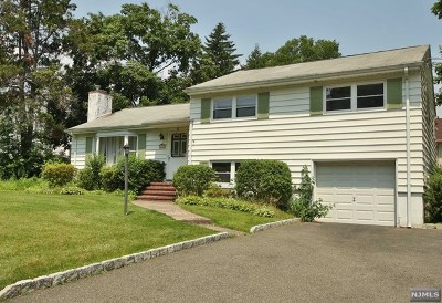 Fair Lawn Single Family Home For Sale: 28-25 High Street