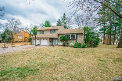 Oradell Single Family Home For Sale: 327 Merritt Drive