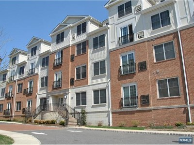 Tenafly NJ Condo/Townhouse For Sale: $415,000