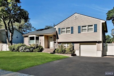 Fair Lawn Single Family Home For Sale: 14-26 Mandon Place