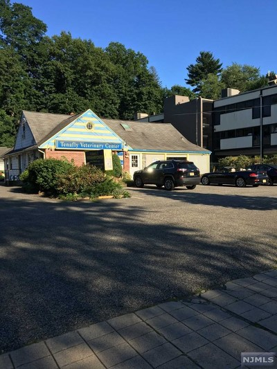 Tenafly Commercial For Sale: 130 County Road