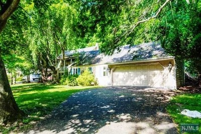 Woodcliff Lake Single Family Home For Sale: 29 Old Pascack Road