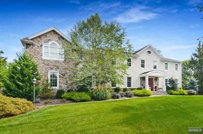 Upper Saddle River Single Family Home For Sale: 28 Peach Tree Place