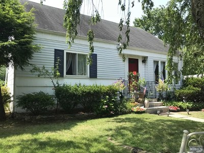 New Milford Single Family Home For Sale: 459 State Road