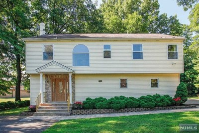 New Milford Single Family Home For Sale: 377 Lincoln Place