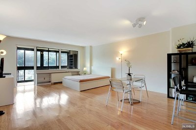 Edgewater Condo/Townhouse For Sale: 1203 River Road #17m