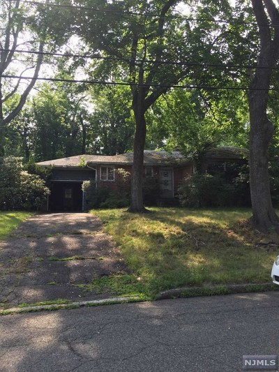 Tenafly Single Family Home For Sale: 133 Lylewood Drive
