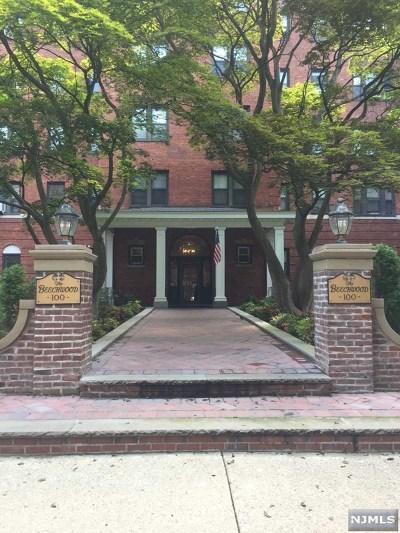 Hackensack NJ Condo/Townhouse For Sale: $195,000
