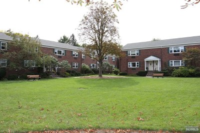 Tenafly Condo/Townhouse For Sale: 72 Demott Street #B