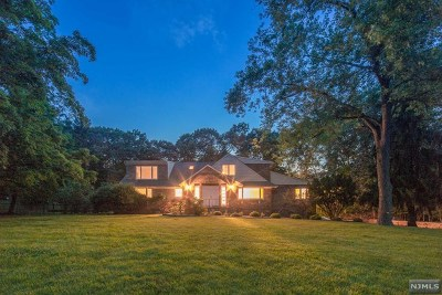 Upper Saddle River Single Family Home For Sale: 53 Skyline Drive