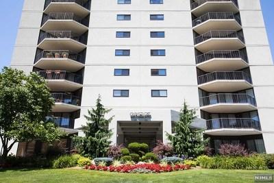 Hackensack NJ Condo/Townhouse For Sale: $375,000