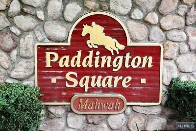 Mahwah Condo/Townhouse For Sale: 1136 Hyde Park Court