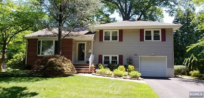 Oradell Single Family Home For Sale: 202 Camden Street