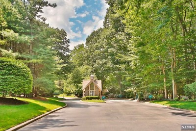 Park Ridge Condo/Townhouse For Sale: 203 Bearwoods Road