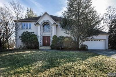 Park Ridge Single Family Home For Sale: 246 Capri Terrace
